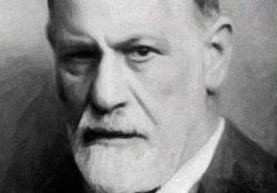 Freud y la cuestión homosexual