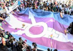 La Plataforma por los Derechos Trans pide más implicación a las instituciones