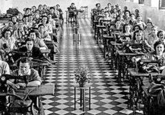 Las mujeres también ganaron el pan: trabajo y género durante el franquismo