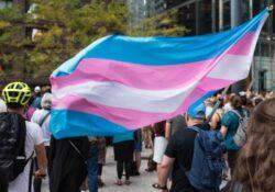 El borrador de la Ley Trans que el PSOE no quiere aprobar: ¿cómo terminar con la transfobia?